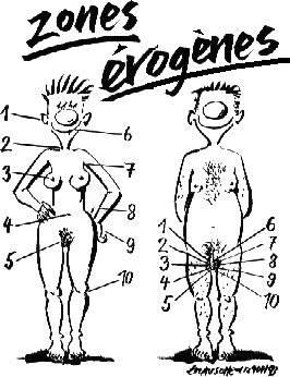 эрогенные зоны женщины и мужчины.
